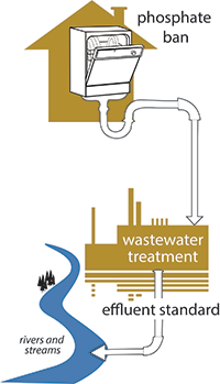 graphic depicting phosphate going from a dishwasher through a wastewater treatment facility and finally into rivers and streams